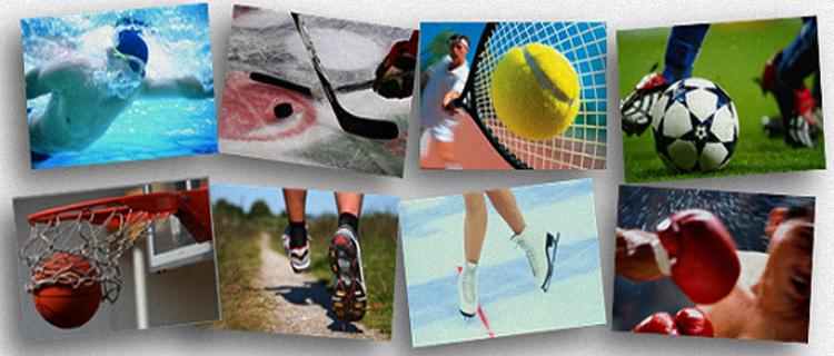 Старт в сфере спортивных ставок: ТОП-6 рекомендаций