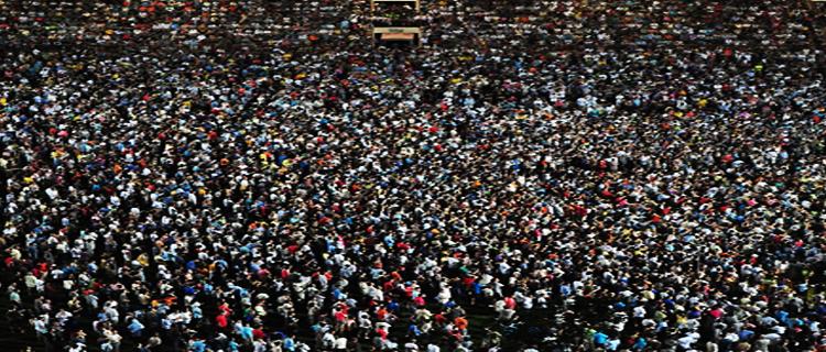 Мудрость толпы в ставках на спорт